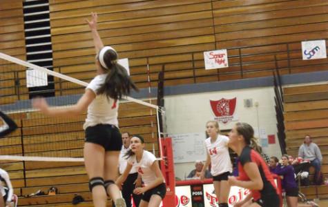 Girls volleyball has good season